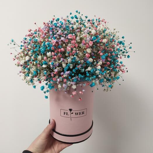 Цветы в коробке Радужная гипсофила