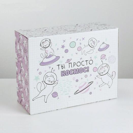 Коробка‒пенал «Ты просто космос», 30 × 23 × 12 см