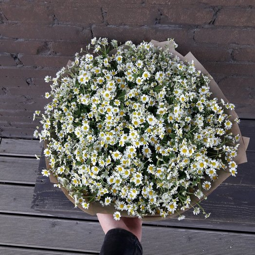 51 Ромашка : букеты цветов на заказ Flowwow