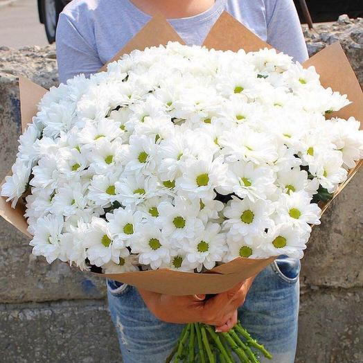 A bouquet of Bush hrizantemi