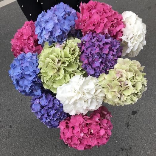 Огромный букет шикарной гортензии: букеты цветов на заказ Flowwow