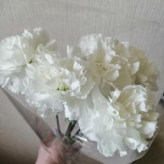 Букет из гвоздик для ветеранов: букеты цветов на заказ Flowwow