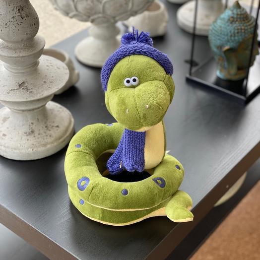 Очаровательная змея в шапке