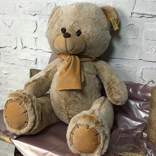 Медведь Чан