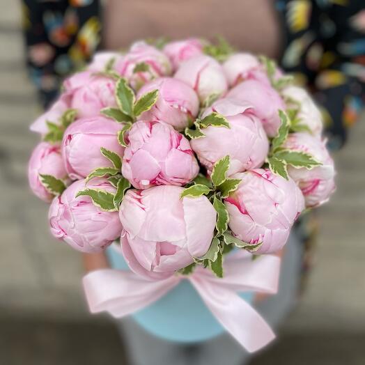 Пионы нежно розовые в коробочке