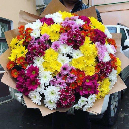 51 Хризантема микс: букеты цветов на заказ Flowwow