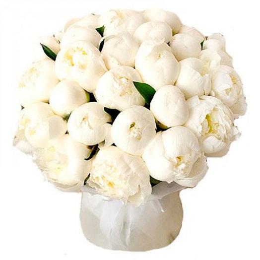 Bianco White: букеты цветов на заказ Flowwow