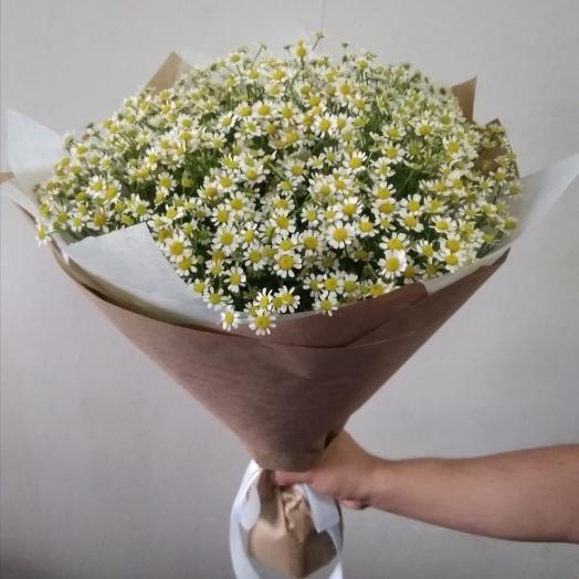 Букет из 25 ромашек камилла: букеты цветов на заказ Flowwow
