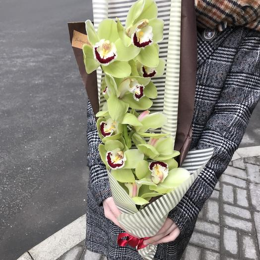 Красавица орхидея: букеты цветов на заказ Flowwow