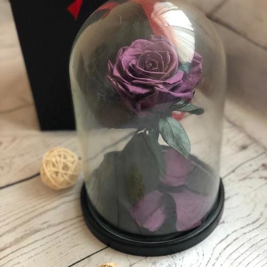 Живая фиолетовая роза в колбе: букеты цветов на заказ Flowwow