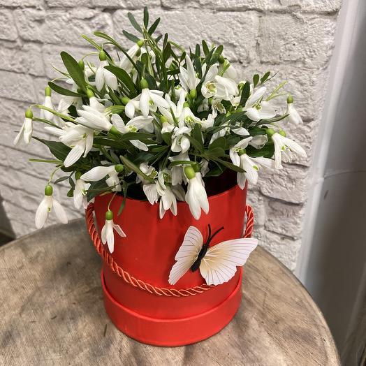 Коробочка подснежников из сказки: букеты цветов на заказ Flowwow