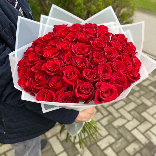 51 роза 60 см красная
