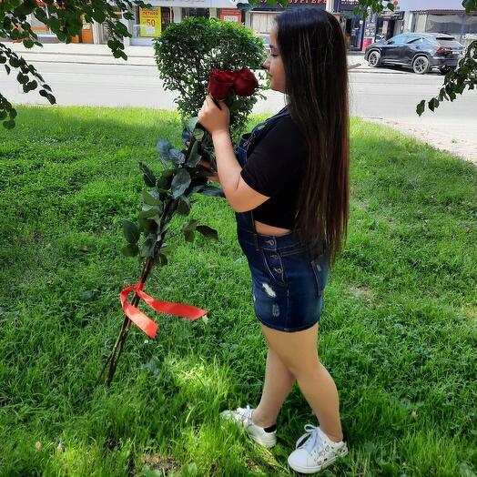 Роза 100см красная 3 шт