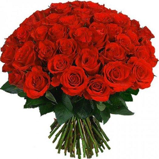 51 красная роза 60 см: букеты цветов на заказ Flowwow
