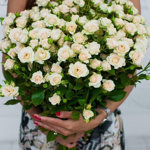 Букет из 25 кустовых роз «Creme»