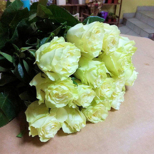 Букет из 15 премиум-роз Mondia: букеты цветов на заказ Flowwow