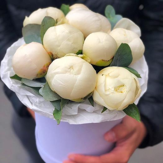 9 белых пионов в шляпной коробке: букеты цветов на заказ Flowwow