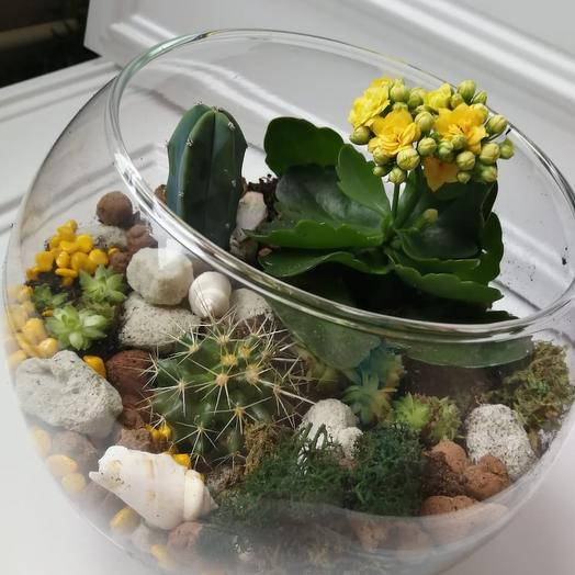 Солнечный сад: букеты цветов на заказ Flowwow