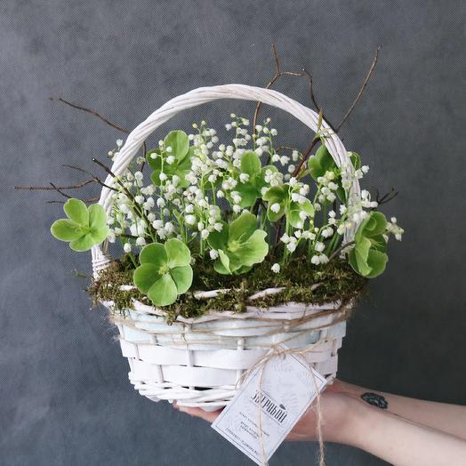 Корзина ландышей: букеты цветов на заказ Flowwow