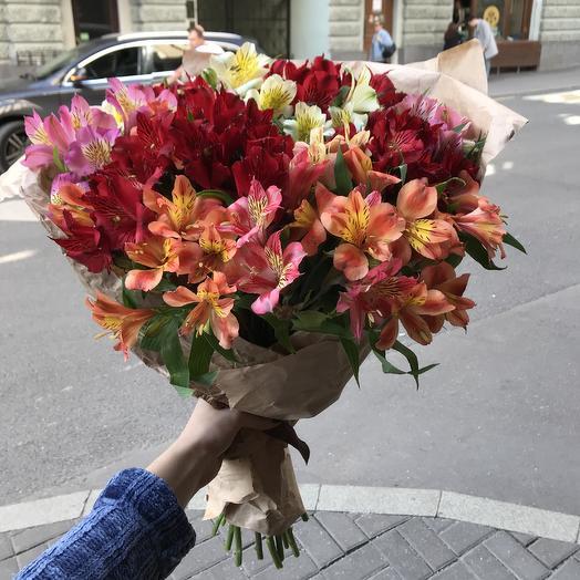 Яркая альстромерия для Вашей любимой по супер цене: букеты цветов на заказ Flowwow