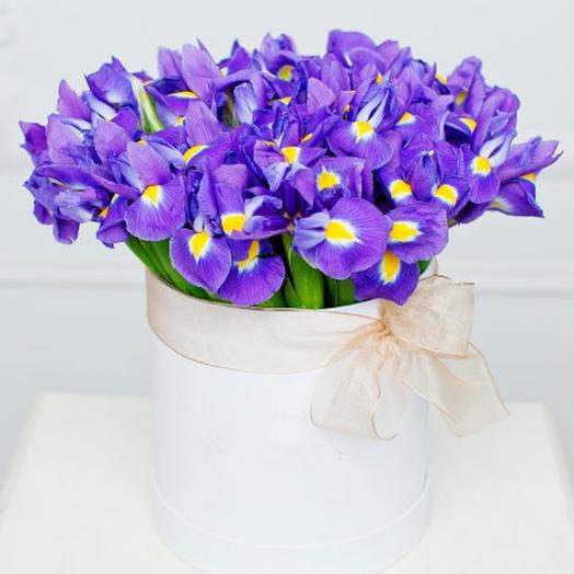 """Букет """"51 ирис в шляпной коробке"""": букеты цветов на заказ Flowwow"""