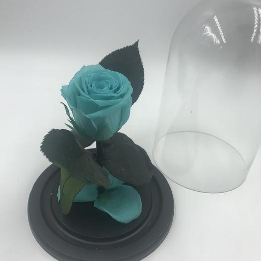 Мятная роза в колбе MINI: букеты цветов на заказ Flowwow