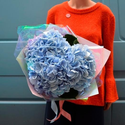 Голубые гортензии: букеты цветов на заказ Flowwow