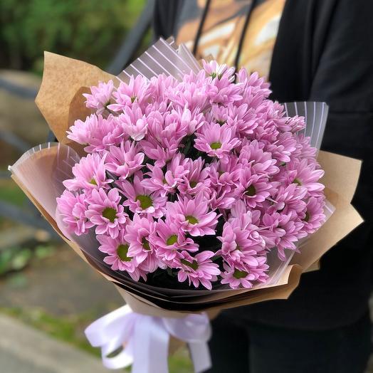Хризантемы кустовая