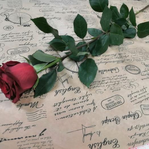 Роза эксплоэр
