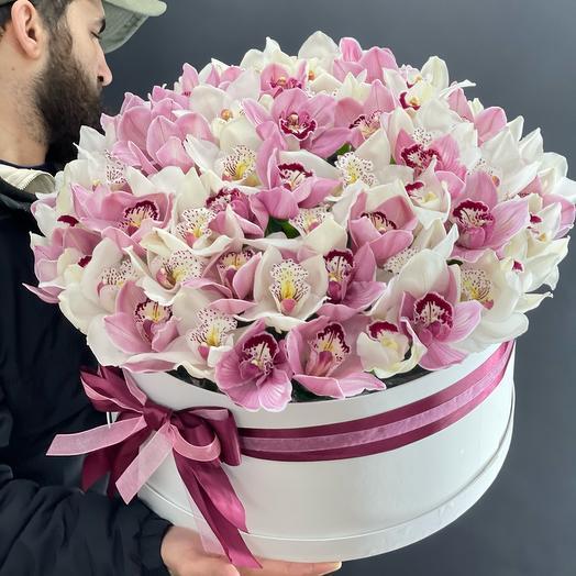 Нежные Орхидеи в коробке
