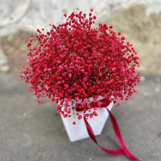 Коробочка красной гипсофилы