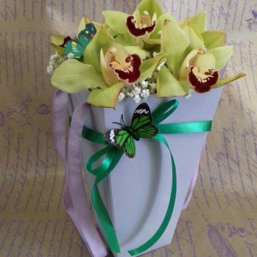 Кулек орхидей: букеты цветов на заказ Flowwow