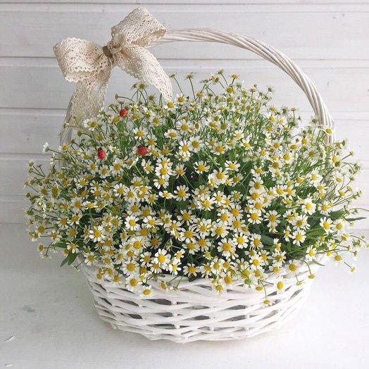 Летняя корзина: букеты цветов на заказ Flowwow