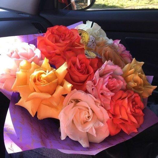 11 роз Софи Лорен