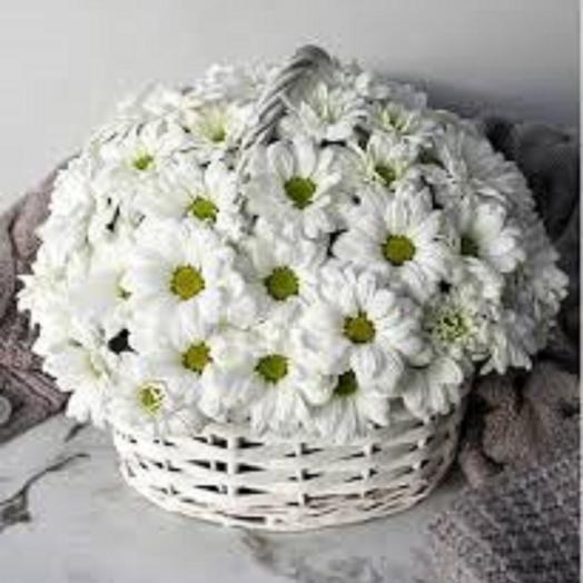 Корзинка с белой хризантемой: букеты цветов на заказ Flowwow