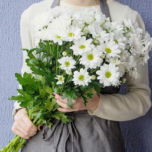 """Букет из белых хризантем """"Лето"""": букеты цветов на заказ Flowwow"""