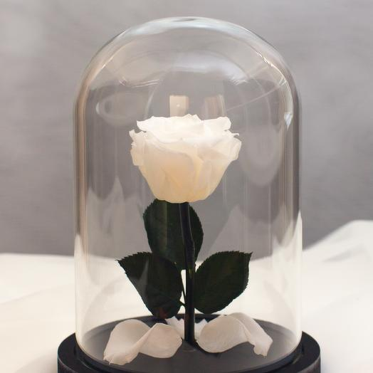 Роза в колбе RozaRose Мини Белая