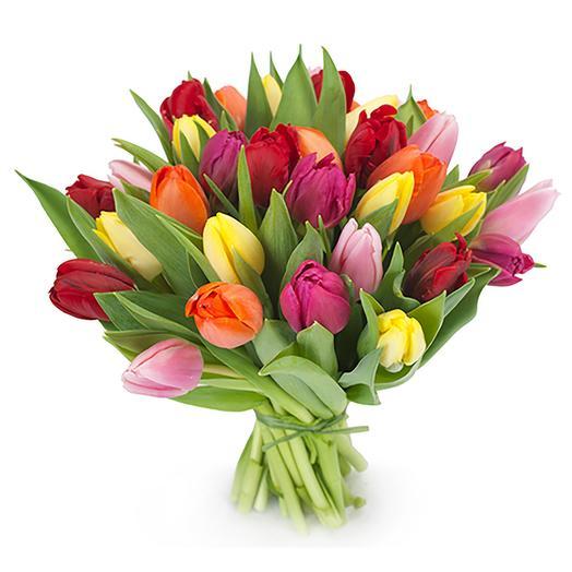 25 тюльпанов микс: букеты цветов на заказ Flowwow