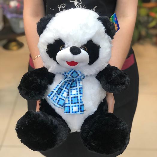 🐼 панда