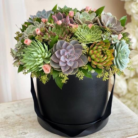 Коробка с суккулентами Luxury Flowers Лесная сказка