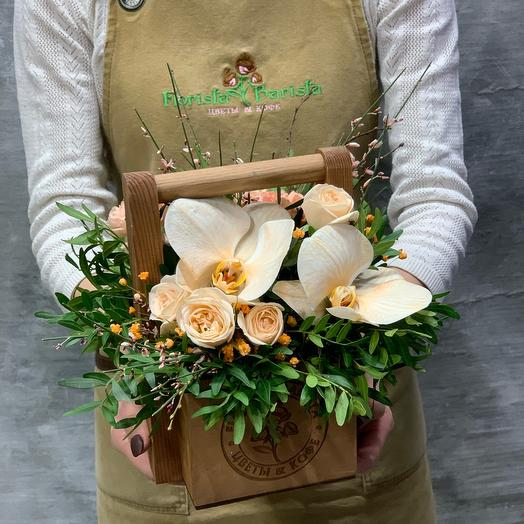 Ящик с орхидеей фаленопсис и диантусами