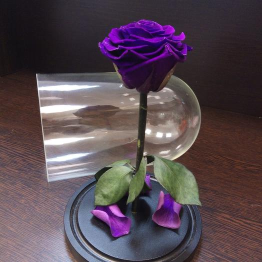 Rose stabilized in a flask