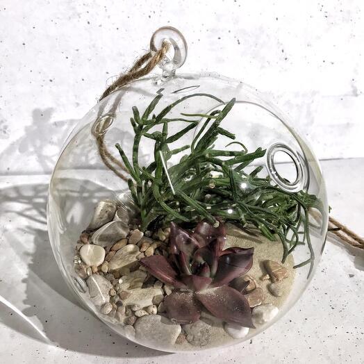 Флорариум подвесной Сказочный оазис