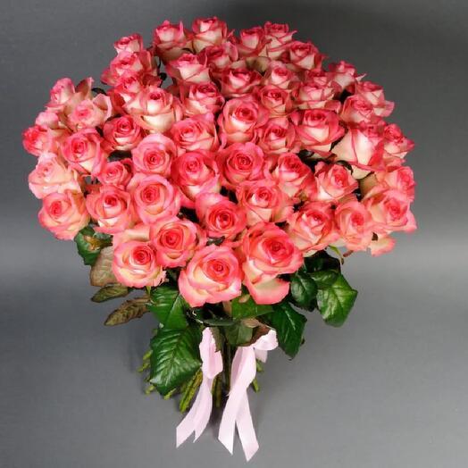 Роза Джумилия 51шт