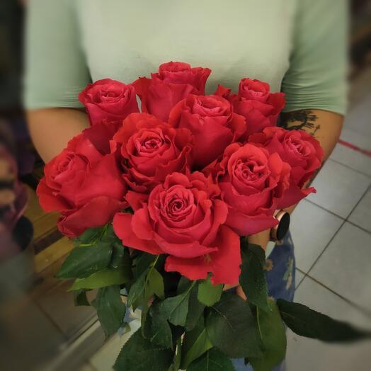9 красных эквадорских роз