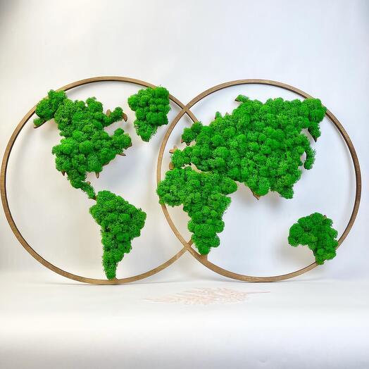 Карта мира на полушариях маленькая