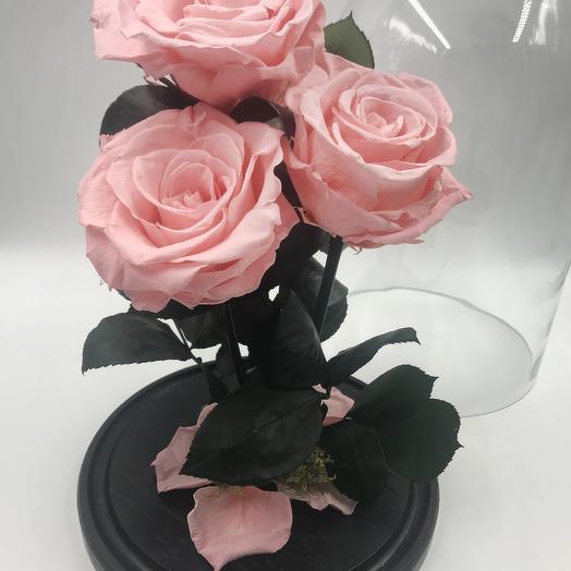 Розовая роза в колбе TRIO: букеты цветов на заказ Flowwow