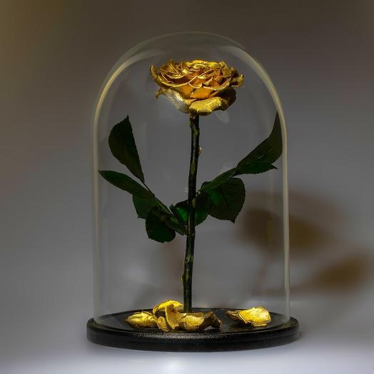 Роза в колбе Золотая