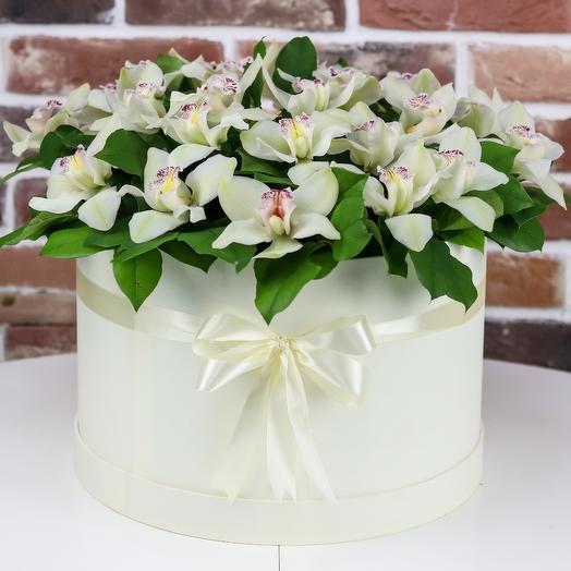 Коробка XXL из белой орхидеи. N411