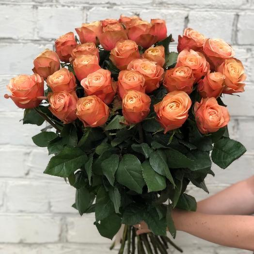 Пионовидная роза «Кахала»